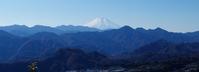 富士山展望 八重山 - いぐさん流 山と花の写真(富士山)