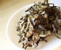 蘭亭から生まれたお茶@グリニッシュシャンピン - Tea Wave  ~幸せの波動を感じて~