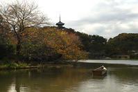 大池の景色 - N.Eの玉手箱