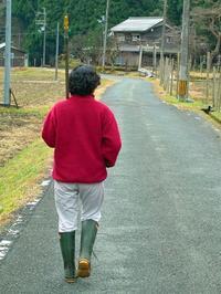 赤の年、猿年も残すところ一か月・・・師走。 - 朽木小川より 「itiのデジカメ日記」 高島市の奥山・針畑郷からフォトエッセイ