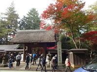 紅葉狩り 『平林寺』 - おいしい日々