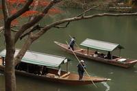 屋形船 - 静かな時間