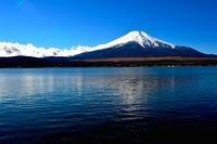 限り月 寫誌 ③ もう一対の富士  '14.11.27 11:26 vs '16.11.27 11:18 - le fotografie di digit@l