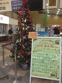 クリスマスツリーに願いを... - はこね旅市場日記