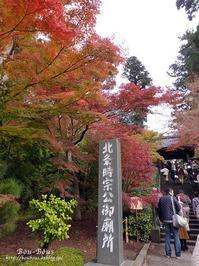 秋の鎌倉〜東慶寺・浄智寺 - ぶうぶうず&まよまよの癒しの日記