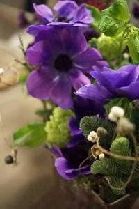 アネモネのセパレーツコンポジション - お花に囲まれて