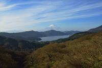 大観山 - 富士山に夢中