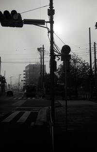 霧の朝 - 心のカメラ / more tomorrow than today ...