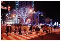 ホワイト・イルミネーションは、冬の夜の札幌を楽しむのに最高のイベントだと思う - 札幌日和下駄