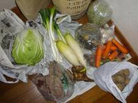 前回が最後かと思ったが本当に今年最後の実家の野菜 - RÖUTE・G DRIVE AFTER DEATH