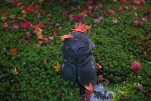 圓光寺 - 京都写真(Kyoto Photo)