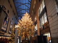 パサージュ広場のクリスマスツリー - 丁寧な暮らし 2