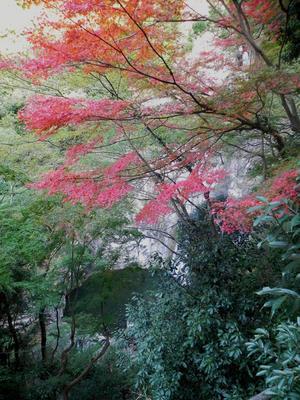 孤高の天才・加藤文太郎の愛した六甲の山々に抱かれ、命の洗濯をする・・・その1 - きゅびの、ひねもすのらりノウタリン。