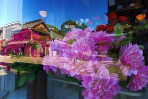 江戸東京たてもの園・・・撮影会 - 『私のデジタル写真眼』