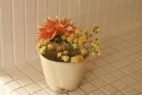 お花の定期便 - ねこまくら