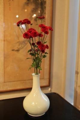 花だより菊分院白瓷 - 川口美術
