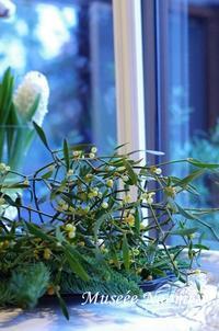 クリスマスレッスン続きます - Musee Naomi「花とくらしの12カ月」