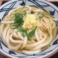かけうどん(並)@丸亀製麺 - 香港と黒猫とイズタマアル 2