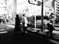 弥生坂 - summicron