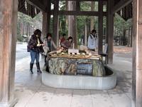北海道神宮 - 小さなお庭のある家