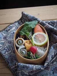 鮭弁当 - Delicatusib