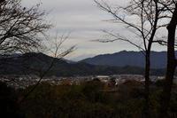 蓮華寺池公園お姫平からの富士山 - 蓮華寺池の隣5