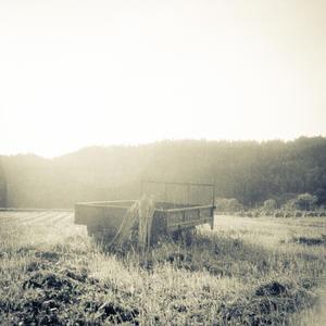 朝陽に輝く北国の畑ヒロ - Film&Gasoline