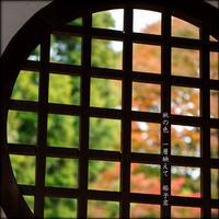 格子窓 - すくえあのーと