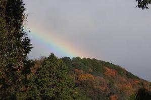 木枯らしに咲く虹 - 絵本だまり