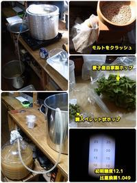 自ビールNo16 Ayashi White beer - ■■ Ainame60 たまたま日記 ■■