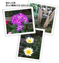 オープンガーデン - *マウオリオリ* リボンレイ~Happy♪ Joyful♪ Thankful !!