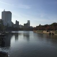 愛媛・広島・京都の旅  12/2 宮島 - ほろ酔いにて