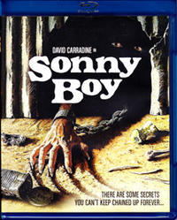 「ワイルド・ボーイ」 Sonny Boy  (1989) - なかざわひでゆき の毎日が映画三昧