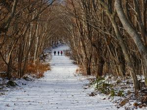 有珠山、12月3日-その1- - デジカメ持って野に山に