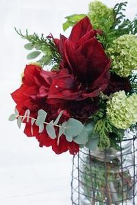 「純愛の君」なんて素敵なネーミング!! - お花に囲まれて