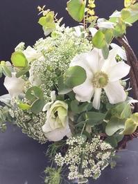 アネモネに魅せられて - お花に囲まれて