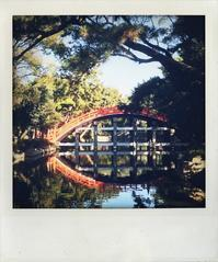 反橋。 - Quality Of Life??