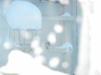 根雪 - リイノ美容室