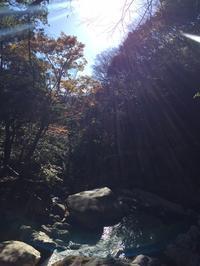 ◆御在所岳裏道~国見岳国見尾根 ヤバキタコレ!ピーカン! - samatwa blog