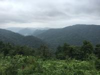 世界自然遺産KhaoYai National Park@カオヤイ - ☆M's bangkok life diary☆