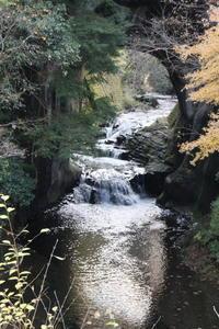 濃溝の滝と亀山湖の紅葉 - 亢竜悔いあり