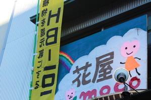 HB-101販売店 - 目黒区都立大の花屋  moco    花と 植物で楽しい毎日     一人で全力で営業中