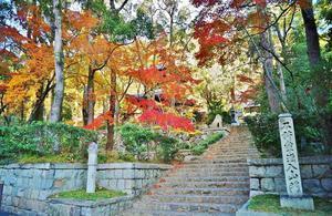 徳光院の紅葉@神戸 - たんぶーらんの戯言