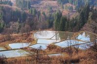 初冬の棚田 - 松之山の四季2
