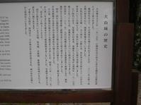 犬山城【三国 さん】 - あしずり城 本丸