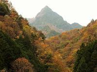 上野村 山火事で失われた天丸山北稜から大山北尾根ループ   Mount Tenmaru and Ōyana in Ueno, Gunma - やっぱり自然が好き