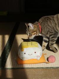 豆腐くんのお披露目 - すみやのひとり言・・・