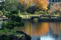 江戸のお庭を撮る④ 旧芝離宮恩賜庭園 - miyabine's フォト日記~身の周りのきれい・可愛い・面白い~