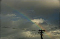 Rainbow - It's only photo