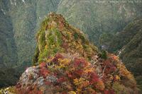 東大台の秋。② - Junior's irregular photo blog